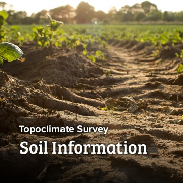 Topoclimate - Soil Information Sheets